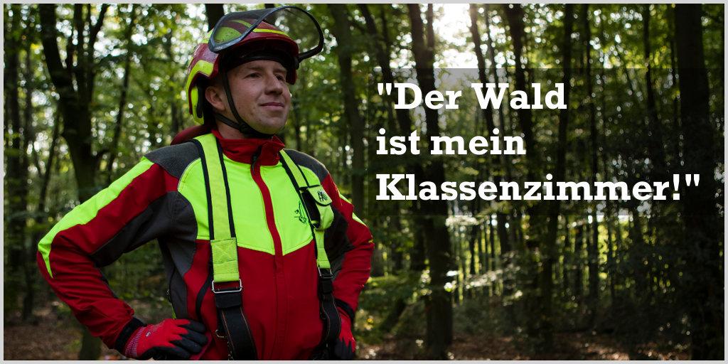 Titelbild - Willkommen bei treeTeacher | Markus Rotzal